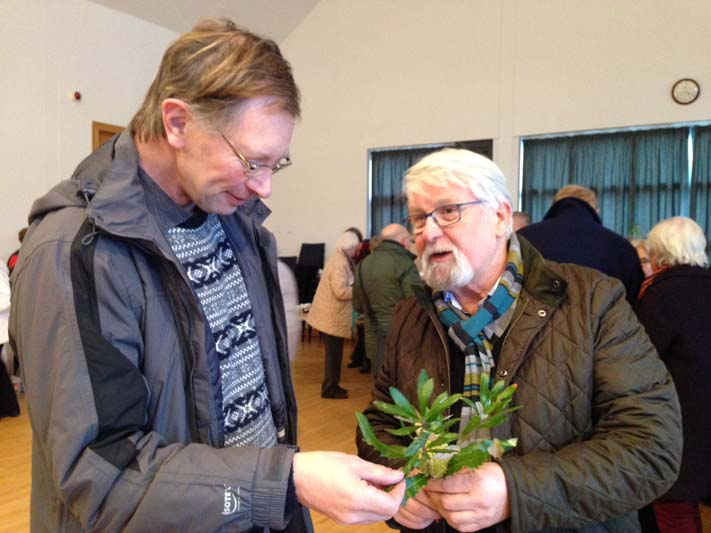 Robert Trotter, who has recently joined the Northern sub-committee, with committee member Victor Henry admiring Banksia marginata in full bloom