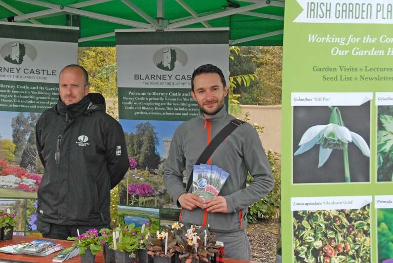 Blarney stand at Fota with Bruno Nicolai  (3)