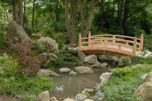 Lafcadio Hearn Gardens, Tramore - Guided Tour @ Lafcadio Hearn Japanese Gardens