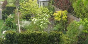 Blackrock Alpine Garden @ Main St. Blackrock - exact details will be forwarded nearer event