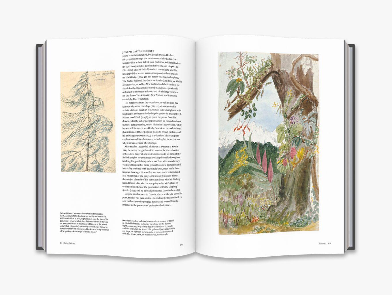 Botanical Sketchbooks 2
