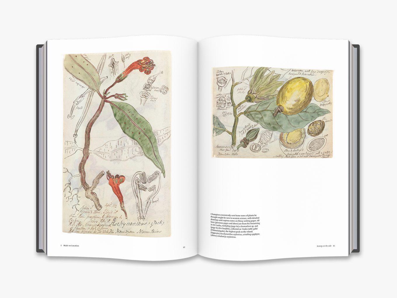 Botanical Sketchbooks 4
