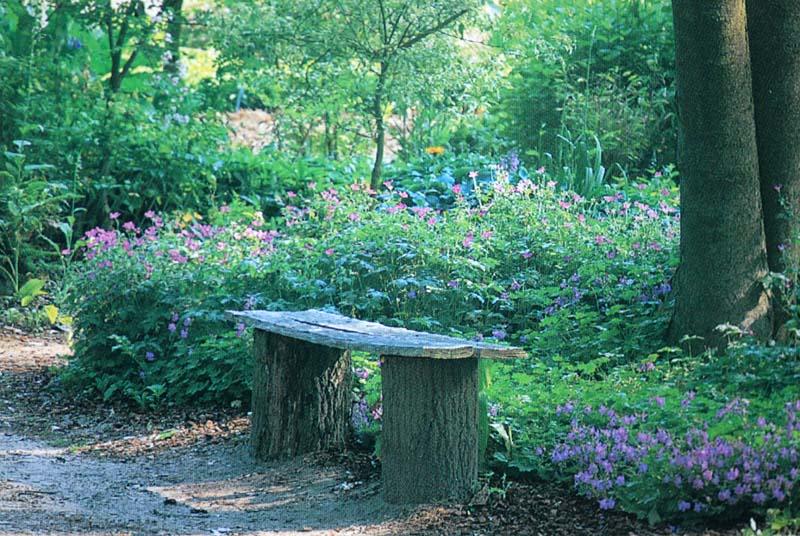 Beth Chatt's Shade Garden