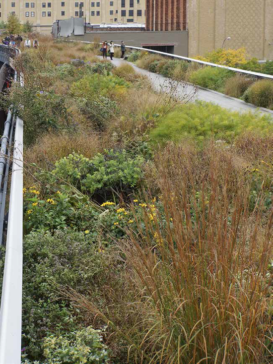 High Line (1)