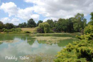 """The Gardens of Scotland"" - with Colin Wren @ National Botanic Gardens"
