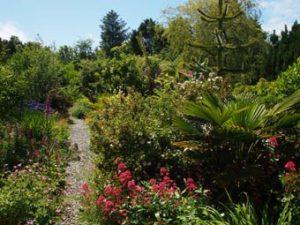 Visit to Ballycomane Garden, Bantry @ Ballycommane